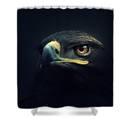 Eagle Shower Curtain by Zoltan Toth