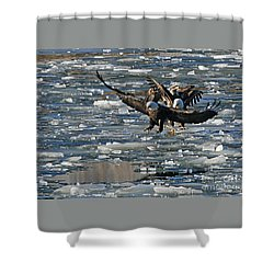 Eagles On Ice Shower Curtain