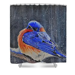 Early Arrival Shower Curtain