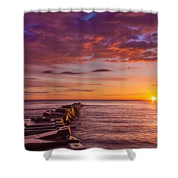 Early Atwater Burst Shower Curtain