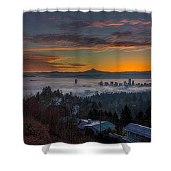 Early Bird Special Shower Curtain by David Gn