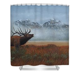 Early Call Shower Curtain