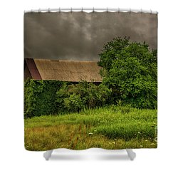 Early Monring Rain Shower Curtain