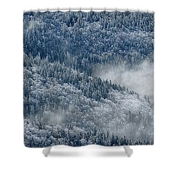 Early Morning After A Snowfall Shower Curtain