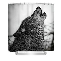 Early Morning Call Shower Curtain