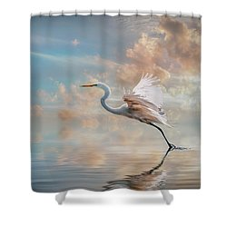 Early Morning Egret Shower Curtain by Brian Tarr