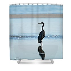 Early Morning Heron Shower Curtain