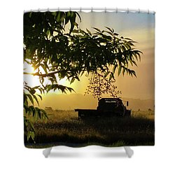 Shower Curtain featuring the photograph Early Morning In Watsonville by Lora Lee Chapman