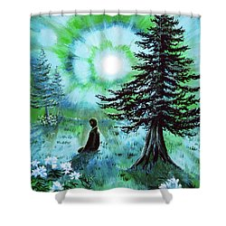 Early Morning Meditation In Blues And Greens Shower Curtain by Laura Iverson