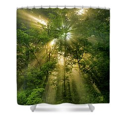 Early Morning Peace Shower Curtain by Christina Rollo
