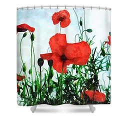 Early Morning Poppy Moment Shower Curtain