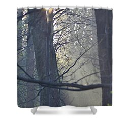 Early Morning Rays Shower Curtain by Bill Cannon