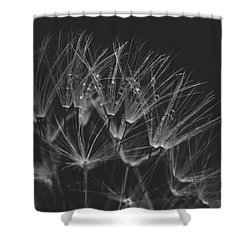 Early Morning Rituals Shower Curtain