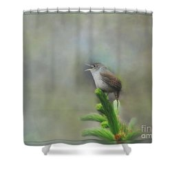 Shower Curtain featuring the photograph Early Morning Songbird by Brenda Bostic