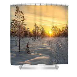Early Morning Sun Shower Curtain by Rose-Maries Pictures