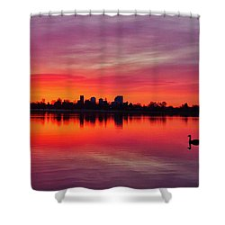 Early Morning Swim Shower Curtain