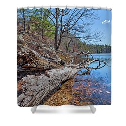 Early Spring... Shower Curtain