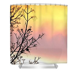 Shower Curtain featuring the photograph Early Spring Sunset by Will Borden