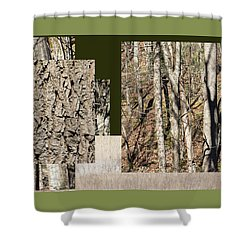 Early Spring Walk -  Shower Curtain