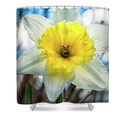 Early Spring Shower Curtain by Wayne King