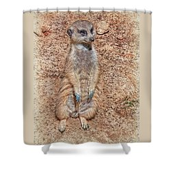 Shower Curtain featuring the photograph Earth Manikin by Hanny Heim