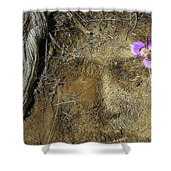 Shower Curtain featuring the photograph Earth Memories-desert Flower # 1 by Ed Hall