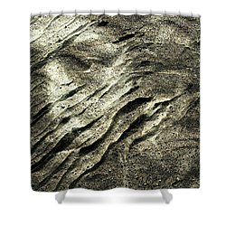 Shower Curtain featuring the photograph Earth Memories - Sleeping River # 4 by Ed Hall