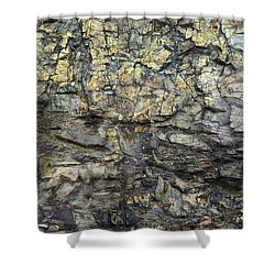 Shower Curtain featuring the photograph Earth Memories - Stone # 6 by Ed Hall
