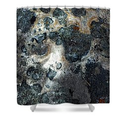 Shower Curtain featuring the photograph Earth Memories - Stone # 8 by Ed Hall