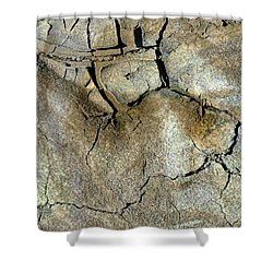 Shower Curtain featuring the photograph Earth Memories-thirsty Earth by Ed Hall