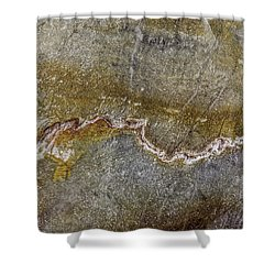 Earth Portrait 000-204 Shower Curtain