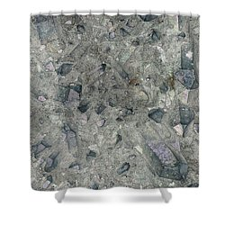 Earth Portrait 158 Shower Curtain