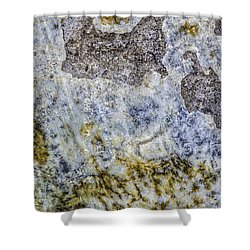 Earth Portrait L4 Shower Curtain