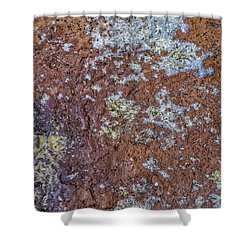 Earth Portrait L6 Shower Curtain