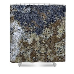 Earth Portrait L8 Shower Curtain