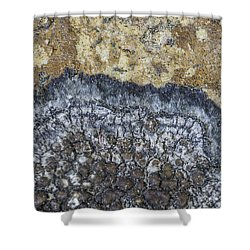 Earth Portrait L9 Shower Curtain