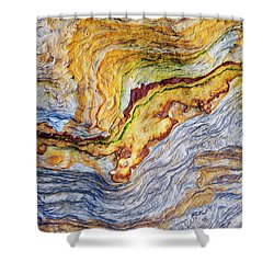 Earth Stone Shower Curtain