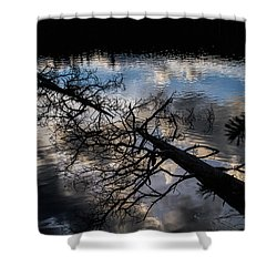 Earth To Water Shower Curtain by Alana Thrower