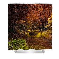 Earth Tones In A Illinois Woods Shower Curtain by Thomas Woolworth