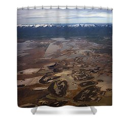 Earth's Kidneys Shower Curtain by Ryan Manuel