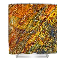 Earths Palette Shower Curtain by Karon Melillo DeVega