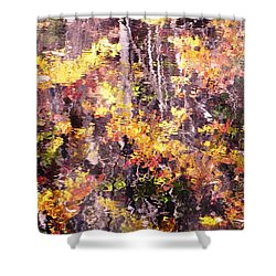 Earthy Water Shower Curtain