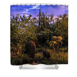 Shower Curtain featuring the photograph East Of Sunset V40 by Mark Myhaver