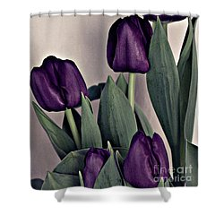 A Display Of Tulips Shower Curtain