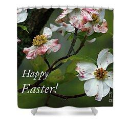 Easter Dogwood Shower Curtain by Douglas Stucky