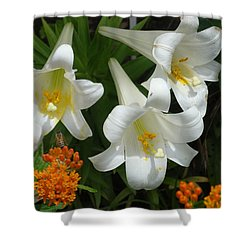 Easter Lilies And Butterfly Weed Shower Curtain