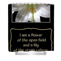Easter Lily With Song Of Songs Quote Shower Curtain by Rose Santuci-Sofranko