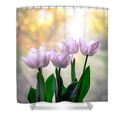 Easter Tulips Shower Curtain