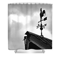 Easterly Wind  Shower Curtain by Juls Adams