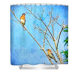 Eastern Bluebird Couple Shower Curtain